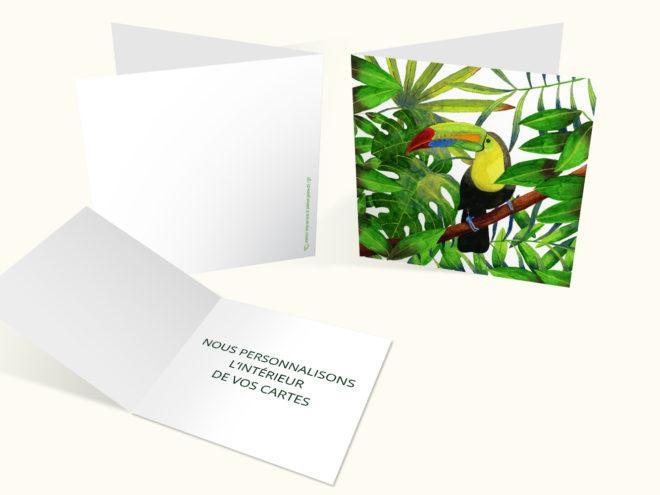 Carte Toutes Occasions - Beau Toucan